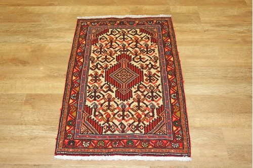 100% Wool Multi Persian Hamadan Rug HAM006000 95 x 60 Handknotted in Iran with a 11mm pile