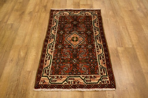 100% Wool Multi Persian Hamadan Rug HAM009CHE 117 x 68 Handknotted in Iran with a 11mm pile